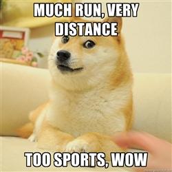 run doge